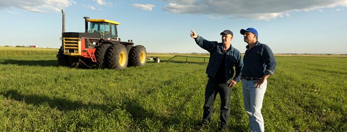Застраховки за селскостопански производители